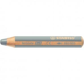 Crayon de couleur Woody argent