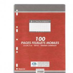 100 copies simples A4 en 21x29,7 soit 200 pages grands carreaux