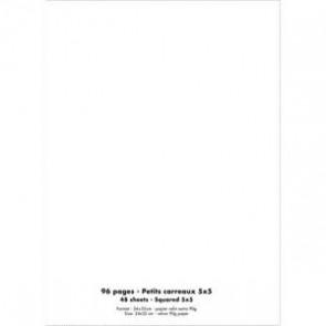 Cahier piqûre 24x32 96 pages petits carreaux 90g. Couverture polypro incolore (Default)