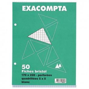 Paquet de 50 fiches bristol perforées carte forte 210 g blanc quadrillé 5x5 format 17 x 22 cm