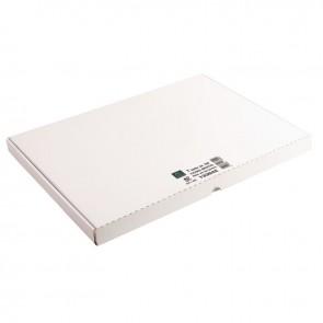 Boîte de 100 fiches bristol non perforées carte forte 205 g uni blanc 29,7 x 42 cm