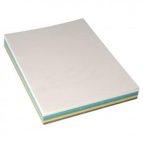 Paquet de 100 couvertures grain cuir, format 21x29,7 cm  assortis. (Vert clair - Gris foncé - Jaune - Bleu clair - Ivoire)
