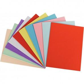Paquet de 100 chemises 220g FOREVER 250 format 24x32 cm coloris assortis