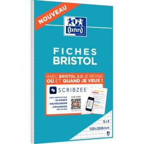 Bloc de 30 fiches bristol perforées 2 trous carte forte 210 g blanc quadrillé 5x5 format 12,5 x 20 cm