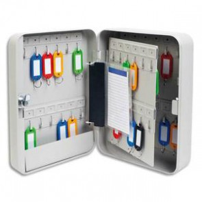 Armoire à clés capacité 48 clés grise - Dimensions : L18 x H25 x P8 cm 5ET