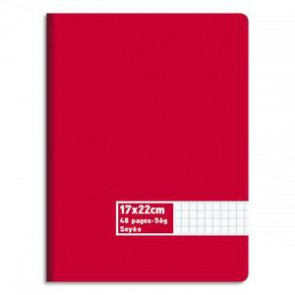 Cahier 48 pages 17 22 cm 302410