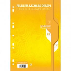 Feuilles mobiles de dessin perforées, A 4 paquet de 80 pages 120g. Référence Clairefontaine 7099C